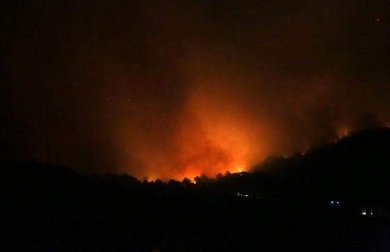 Kolumne − KOMENTAR Briga me za Amazonu, neka izgori, ne bi to bilo ni tako loše